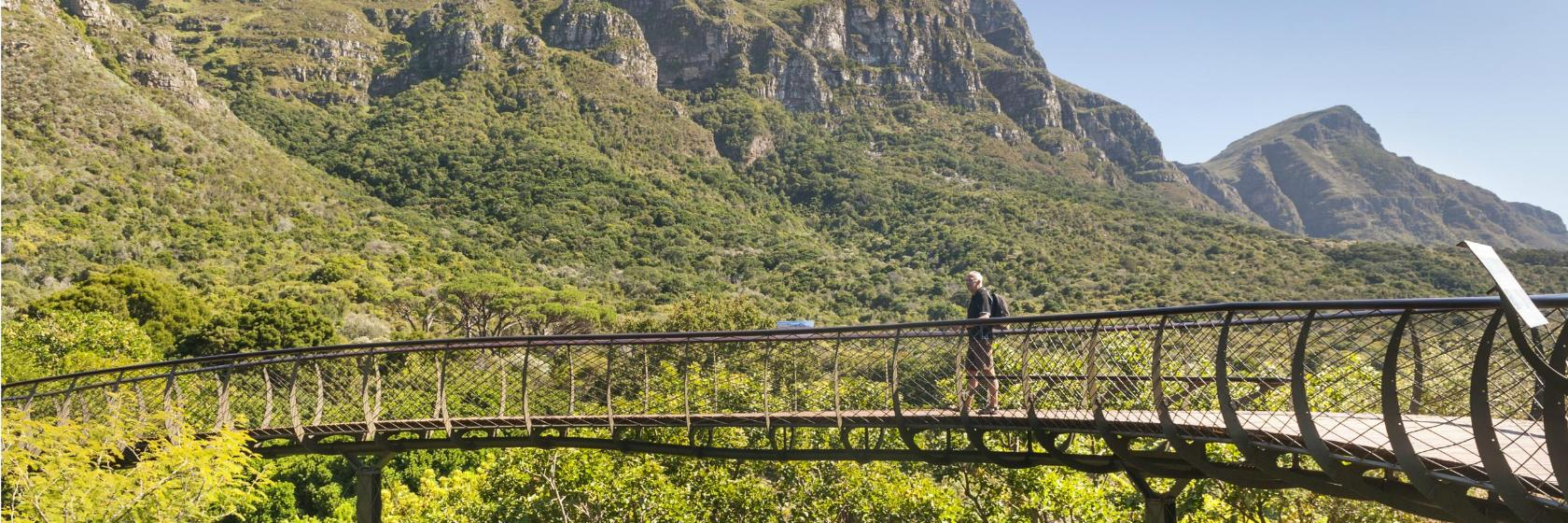 Kirstenbosch Gardens - Nature The Cape Town Big Five